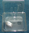 Clear Container with Lid - 100mm deep Half Size